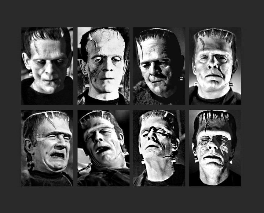 Frankenstein-tumblr_ovgh5egVdd1wzx3t8o1_1280